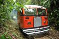 Semusb realiza limpeza no perímetro da estrada de ferro para reativação da Litorina