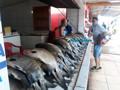 Cresce a procura por peixes na véspera do feriado santo em Porto Velho