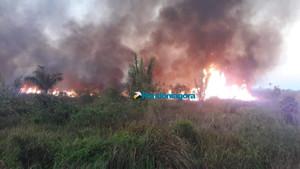 Sedam faz parceria com municípios para combater queimadas