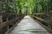 Parque Natural de Porto Velho estará aberto durante o feriado