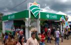 Durante a Rondônia Rural Show, CrediSIS tem linha de financiamento para energia solar