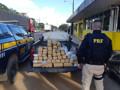 Homem é preso ao ser flagrado transportando 48 quilos de droga na BR-364
