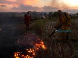 Vídeo: Desde maio, 173 incêndios já foram registrados em Porto Velho