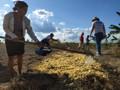 """Curso """"Quintais Produtivos"""" leva práticas agroecológicas a agricultores familiares de Candeias do Jamari"""