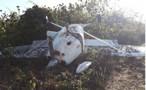 Avião roubado em Vilhena cai na Bolívia