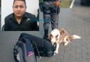 Cão farejador descobre droga em aeroporto e morador de Manaus é preso com quase 8 quilos de maconha em Rondônia