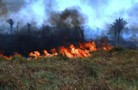 Força-tarefa inicia operação de combate a queimadas em Rondônia