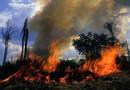 Bolsonaro autoriza Forças Armadas para combater queimadas em Rondônia