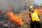 Governo suspende queimadas em todo o país por 60 dias