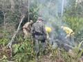 Mais de 200 militares e técnicos atuam nas frentes de combate a incêndios em Rondônia