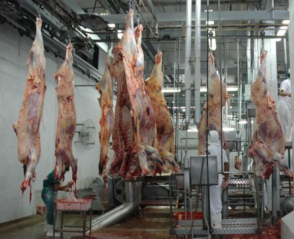 Frigorífico de Rondônia é autorizado a exportar carne para a China