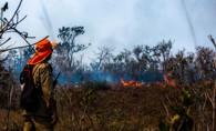 Mato Grosso decreta situação de emergência por causa de queimadas