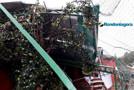 Temporal causa destruição na Capital; estrutura de escolinha de futebol é atingida