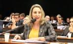 O desafio da energia renovável, barata e bem distribuída no Estado de Rondônia