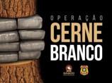 Operação do MP mira quadrilha envolvida com homicídios, invasão de terras e drogas