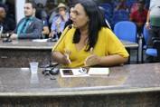 Transporte Escolar: Vereadora Joelna participa de Plano de ação elaborado na Câmara