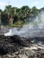 Governo de Rondônia apresentará projeto de combate às queimadas ao ministro do Meio Ambiente