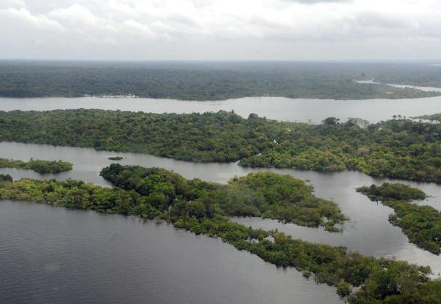 Presidente anuncia criação de Conselho da Amazónia.