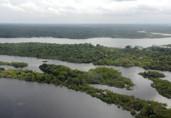Presidente anuncia criação de Conselho da Amazônia e Força Nacional Ambiental