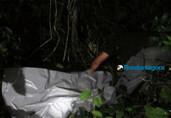 Corpo de homem com rosto desfigurado é encontrado em mata