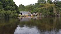 Unidades de Conservação evitam turistas, amparam idosos e redobram esforços contra roubo de madeira