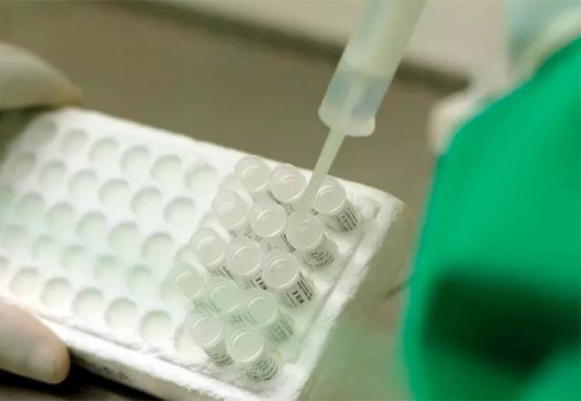 Rondônia permanece com 9 casos de Coronavírus; 179 pessoas aguardam resulta