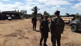 Mais cinco madeireiras são alvo de operação contra extração ilegal; fotos