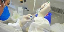 Rondônia ultrapassa 27 mil casos de Coronavírus; mortes somam 647 e pacientes curados 15.864