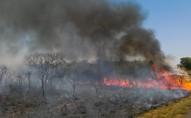 Força-tarefa para combate a incêndios na Amazônia será ampliada