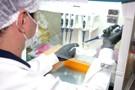 Rondônia ultrapassa 50 mil casos de Coronavírus; curados são quase 42 mil
