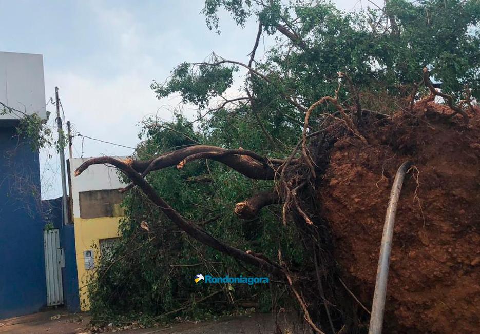 Vídeo e fotos: Temporal com granizo causa destruição na Capital