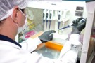 Rondônia registra 359 casos de Coronavírus com 8 mortes nesta quarta-feira
