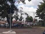 Prefeitura erradica árvores com raízes profundas que prejudicam drenagem e plantará espécies específicas para áreas urbanas