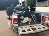 PRF realiza maior apreensão de cocaína nas BRs de Rondônia neste ano