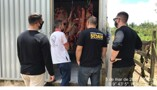 Trabalho conjunto do MP e Sedam resulta em fechamento de abatedouro clandestino em Alto Paraíso