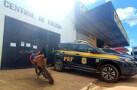 PRF recupera quatro veículos nesta segunda-feira