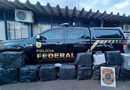 Ação conjunta da PF e FAB apreende 579 quilos de cocaína em Porto Velho
