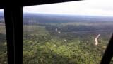 Operação combate ocupação e comércio ilegal de madeira no Parque Estadual de Guajará-Mirim