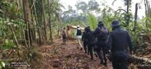 Operação desocupa área no Parque Estadual de Guajará-Mirim