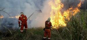 Governo de Rondônia abre seleção com 62 vagas para bombeiros civis voluntários