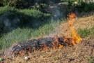 Fiscalização contra queimadas é reforçada em Porto Velho