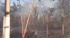 Vídeo: fogo destrói área próxima ao Espaço Alternativo há três dias