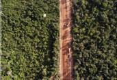 Justiça Federal determina suspensão de audiências públicas sobre licenciamento ambiental da BR-319